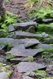 Cutler Coast Public Lands trail, Coastal Trail, stone path, Cutler, Maine.
