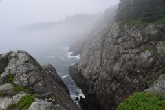 Foggy Maine coast at Cutler Coast Public Lands from the 'Lookout' on the Coastal Trail, Cutler, Maine.